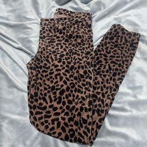 Leopard Print Velvet Skinny Pant